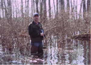 A wetland assessment helps property owners determine if an area qualifies as a wetland before work begins.