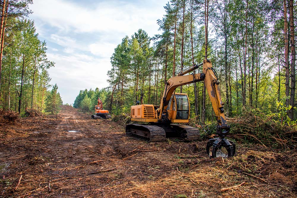 Machinery for tree clearing clears property before develooment.